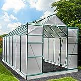 BRAST Gewächshaus Aluminium mit Fundament rostfrei 430x250x235cm Grün 6mm Platten 37 Modelle Alu Treibhaus Glashaus Tomatenhaus