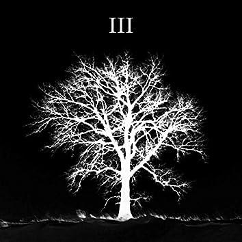 Black Winter 3