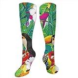 YudoHong Calcetines deportivos grandes y altos para hombre tropicales Toucan Parrot Hoopoe y Palm Leaf Unisex Botas largas para mujer