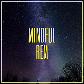 Mindful REM, Vol. 1