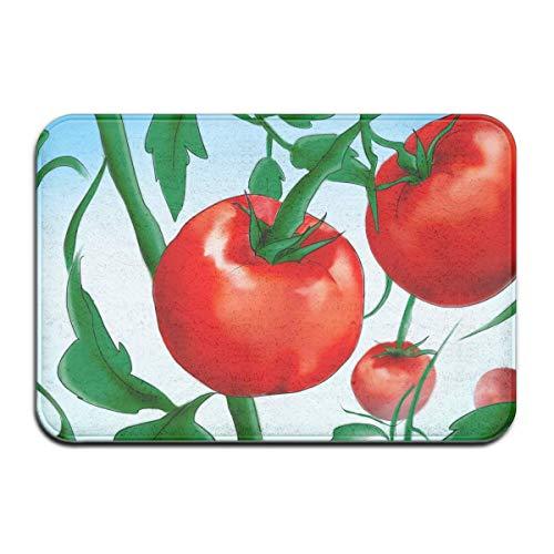 Cy-ril Pflanzen Sie Tomaten aus Samen Outdoor Gummimatte Vordertürmatten Veranda Garage Large Flow Slip Entry Teppich Teppich 40X60 cm