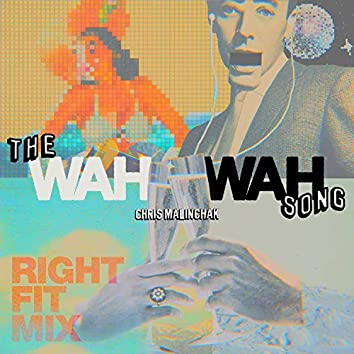 The Wah Wah Song (Right Fit Mix)