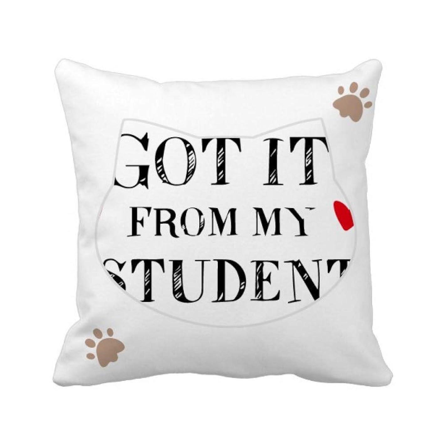 雇用暗くする車両それは私の学生の先生から引用しました 枕カバーを放り投げる猫広場 50cm x 50cm