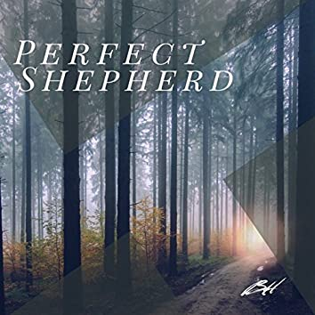 Perfect Shepherd