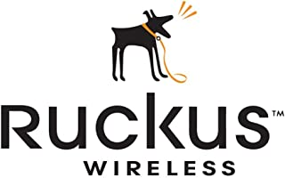Ruckus Wireless Secure MOUNTING BRKT for R710 MOUNTS to Wall/Ceiling/Pole - 902-0120-0000
