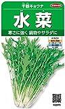 サカタのタネ 実咲野菜2970 水菜 千筋キョウナ 00922970