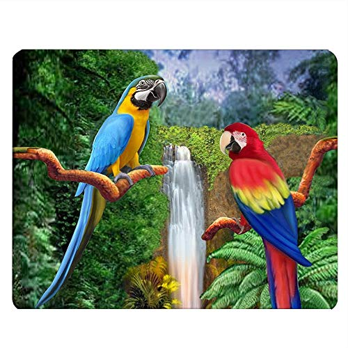 Nicokee Parrots Gaming Mousepad Colorful Parrots Waterfall Rainforest Nature Mouse Pad Mouse Mat for Computer Desk Laptop Office 9.5 X 7.9 Inch Non-Slip Rubber