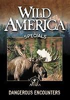 Wild America: Dangerous Encounters