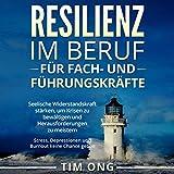 Resilienz im Beruf für Fach- und Führungskräfte: Seelische Widerstandskraft stärken, um Krisen zu bewältigen und Herausforderungen zu meistern - Stress, Depressionen und Burnout keine Chance geben