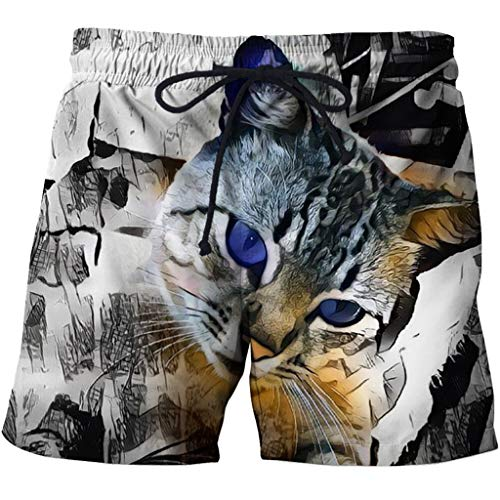 Men's Swim Trunks 3D Casual Fashion Mens Quick Dry Swim Trunks with Pockets 3D Creative Printed Cat Doodle Pattern Summer Comfy Personality Beach Board Shorts Drawstring Quick Dry Beach Shorts