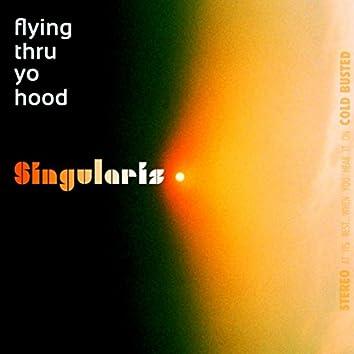 Flying Thru Yo Hood