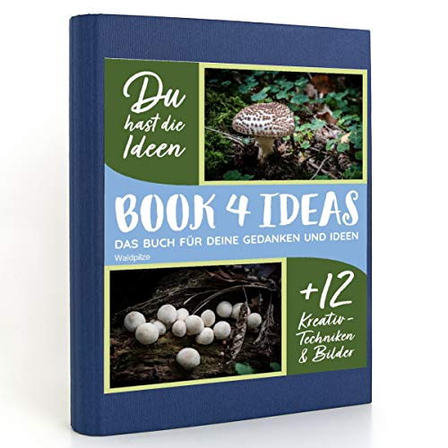 BOOK 4 IDEAS modern   Waldpilze, Eintragbuch mit Bildern