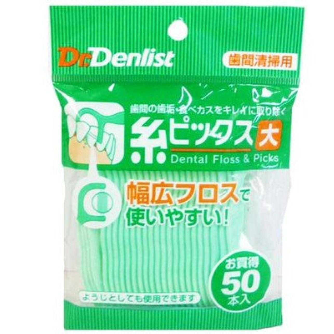 介入する銀行お祝いDr.デンリスト 糸ピックス大 50本入 (クリエイト)