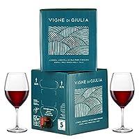 bag in box vino cabernet 5l + bag in box vino refosco dal peduncolo rosso 5l - vigne di giulia