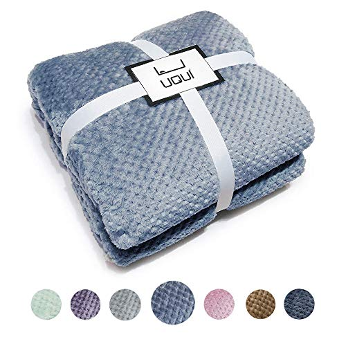 U UQUI Soft Full Size Fleece Bed Summer Blanket 300 GSM Warm Cozy Microfiber Fuzzy Lightweight All Season Blankets for Couch Travel Sofa,Blue 70x78 inches
