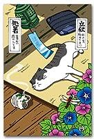 猫の歳時記ポストカード 8月 葉月 夏の絵葉書