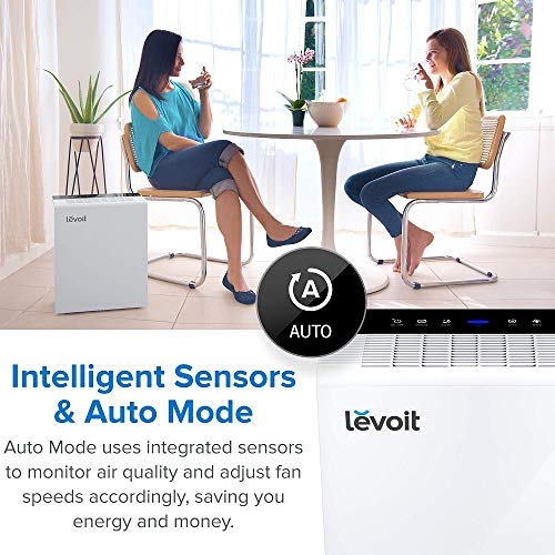 LEVOIT Air Purifier for Home Bedroom, H13 True HEPA Filter for Extra-Large Room, Air Cleaners for Allergies and Pets,Mold,Pollen,Dust,Smoke and Odor Eliminator, Auto Mode and Timer,LV-PUR131