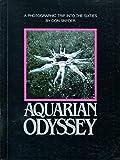 Aquarian Odyssey:  a Nineteen Sixties Album