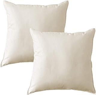 MACK - Set di cuscini di base con imbottitura in piuma | cuscino di piuma per un sonno ristoratore | 40x40 cm - set da 2