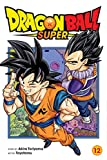 Dragon Ball Super, Vol. 12