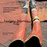 Eucalyptus Didgeridoo Tribe - Peaceful Healing Journey