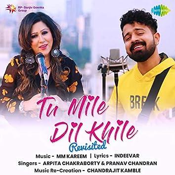 Tu Mile Dil Khile - Revisited