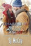 Chase the Blues Away (Summer Lake Seasons Book 4) (English Edition)
