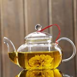 WanLi Pyrex teapot Food grade material flower tea Tall transparent glass teapot high temperature resistant borosilicate glass with glass filtration 1pcs 600ml/20 oz