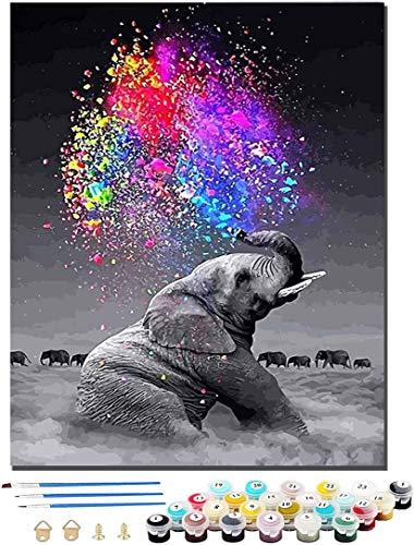 WINAROI pintura por números adultos, pintura por números DIY lienzo digital pintura al óleo regalo para la decoración del hogar (sin marco) 40 * 50 cm