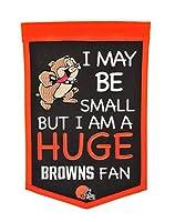 NFL Baltimore Ravens Lil Fan Banner