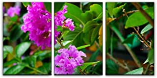 Gracelapin Canvas Wall Art Decor, Flower Crape Myrtle lagerstroemia Bush on Tree Crepes and Pictures Printed Oil Painting Home Decoration- 3 Panels