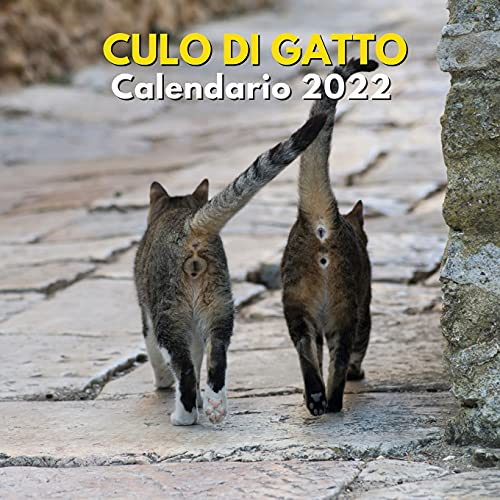 Culo di gatto calendario 2022: calendario regalo scherzo 2022   Un divertente regalo per...