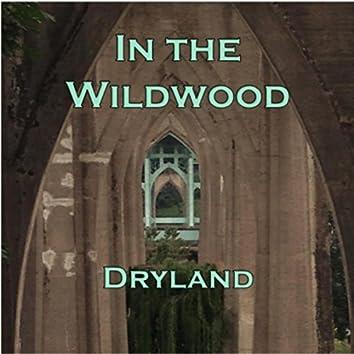 In the Wildwood