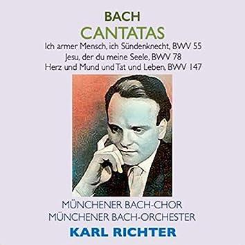 Bach Cantatas · Ich armer Mensch, ich Sündenknecht, BWV 55 · Jesu, der du meine Seele, BWV 78 · Herz und Mund und Tat und Leben, BWV 147