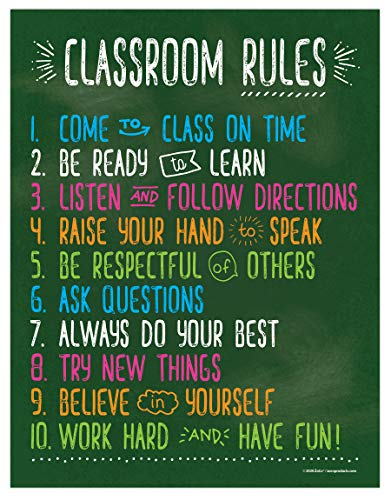 Classroom Rules Poster - Classroom Expectations for Elementary, Middle, and High School - Laminated, 17 x 22 Inches