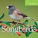 Audubon Songbirds Mini Wall Calendar 2022