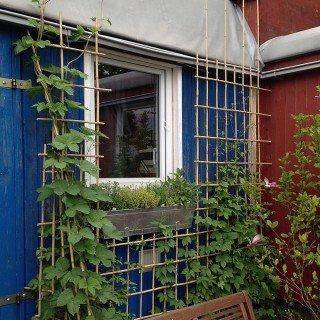 Native Plants -  Rankgitter-Set zum