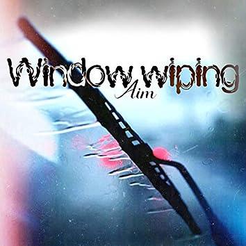 Window Wiping
