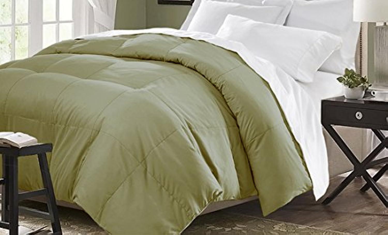 Dreamz Parure de lit Super Doux 550Fils 100% Coton 1Housse de Couette (100g m2 Fibre Fill) UK Double, Mousse d'olive Solide Coton égypcravaten 550tc Doudou
