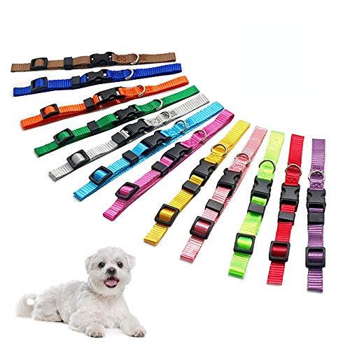 Hundehalsband, Nylon, verstellbar, für kleine Hunde und Katzen, 12 Stück