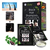 Dexe Black Hair Shampoo 10 PCS   Instant Hair Dye Shampoo for Men and Women Black Color 5 minutes to simple to use - Fast Acting Natural Ingredients - Temporary Hair Dye - Last 30 days