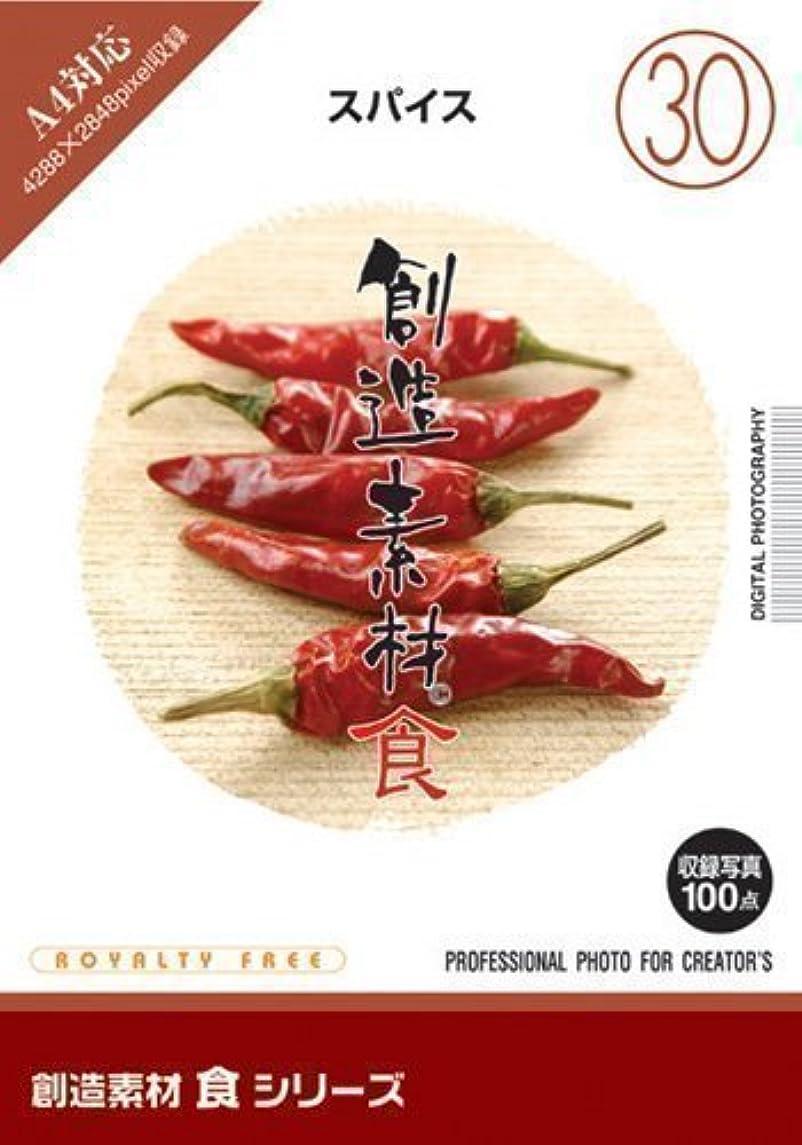 湿気の多いタール首尾一貫した創造素材 食(30) スパイス