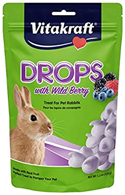 Vitakraft Rabbit Drops With Wild Berries Treat, 5.3 Ounce Pouch from Vitakraft