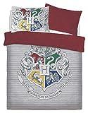 LnB Kids 3D Harry Potter Witchcraft Wizardy Juego de Funda de edredón y Fundas de Almohada, algodón poliéster, Suelto