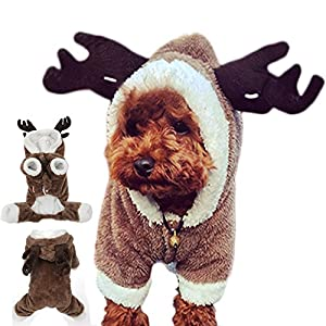 Gossipboy Déguisement pour chine, Motif Renne de Noël pour Yorkshire Terrier, Chihuahua, Spitz nain, etc.