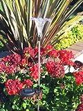 RELIGHTABLE Solar Powered Garden Stake LED Light, Set of 2 (Lily Flower)
