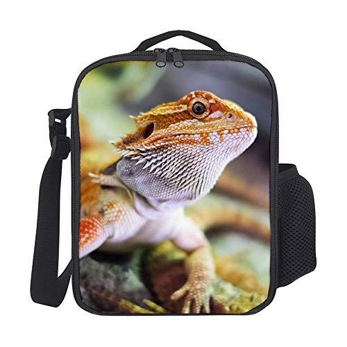 Sara NELL - Mochila para almuerzo infantil con correa para el hombro, diseño de dragón barbudo