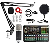 XIRENZHANG Multi-Sound Effect Sound Card Set Live K Song Douyin Network Celebrity Anchor Live Sound Card Set Silver