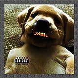 Cachorro de Mendigo [Explicit]