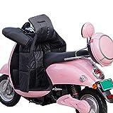 Cubierta de la Pierna de Invierno for Scooters Lluvia Viento Protector frío Rodilla Motocicleta Manta Knee cálido cálculo de Pierna Impermeable Acolchado (Color : B)